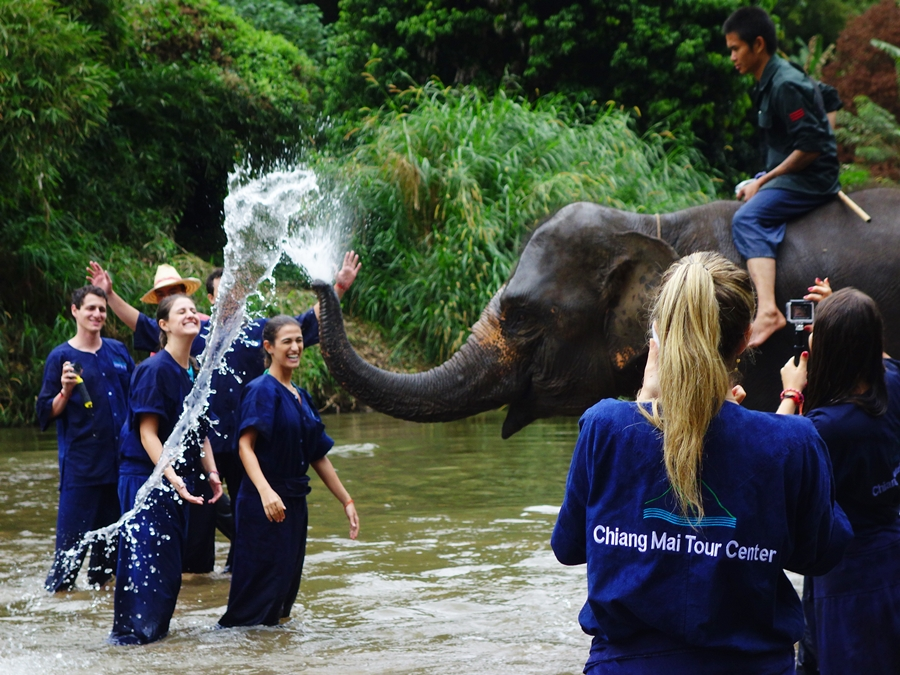2 Days 1 Night Elephant Training + Sticky waterfall + Tree House Chiang Dao + Floating House activity + Swimming & Kayaking in the Nature.