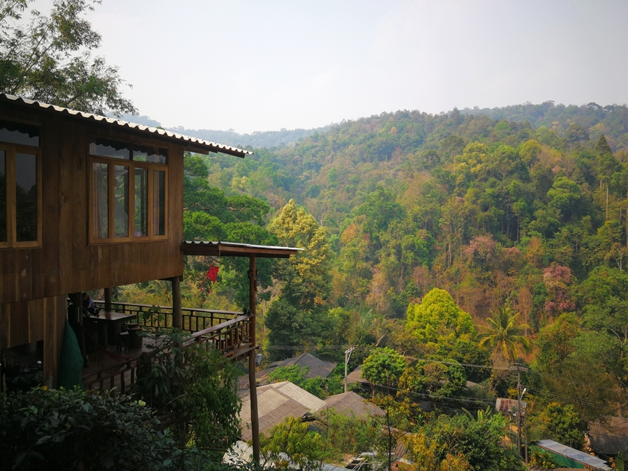 2 Days 1 Night Elephant training + bare back riding + Stunning Chiang Dao non touristic area + The Tree House