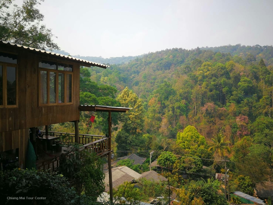 3 Days 2 Nights Elephant Program and Tree House Home Stay.