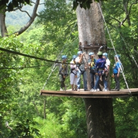 The Eagle Track Zipline
