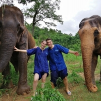 Private Elephant Care and Sanctuary + White Water Rafting + Doi Suthep temple.