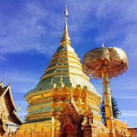 Private Doi Suthep Temple + Baan Jang Nak, the famous wood carving gallery of elephants +  Sankampang Hot Spring