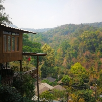 2 Days 1 Night Elephant Sanctuary + Stunning Chiang Dao Non touristic area + The Tree House