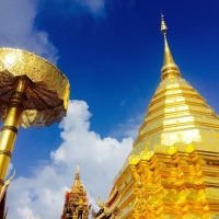 Morning Alm Offering and Doi Suthep Temple. Chiang Mai Tours