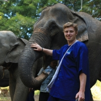 Private Full day Elephant Training in Maetang and Long Neck Village with free transfer to the Tiger Kingdom